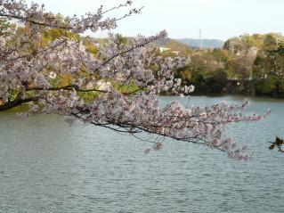 柱大池(東楽園)