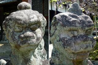 信光明寺 狛犬