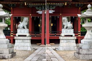 伊賀八幡宮 拝殿の狛犬