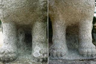 中之郷神社の狛犬