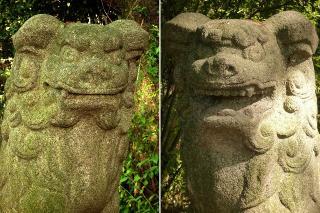 船山神社の狛犬