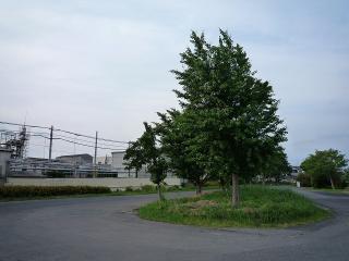 福岡町バス停