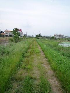 占部川沿いの未舗装路