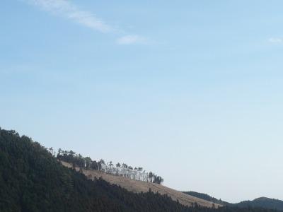 大山阿夫利神社・下社からの眺め