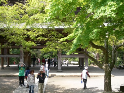 鎌倉 円覚寺その1