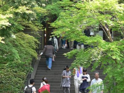 鎌倉 円覚寺その2