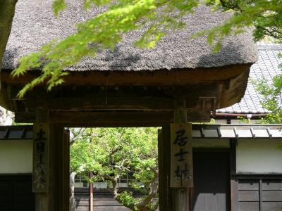 鎌倉 円覚寺にて