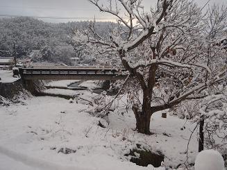雪景色1217