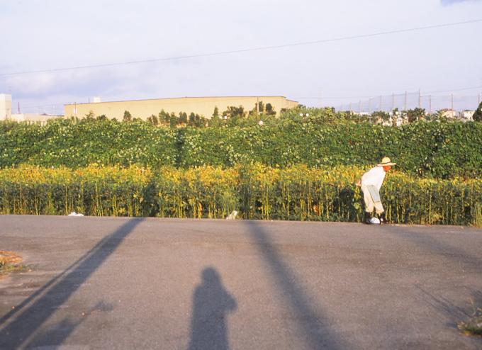 09.08.07 SPF 50mm RDP3 syuukaku