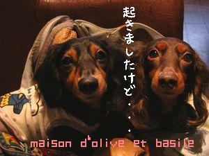 DSCN6167.jpg
