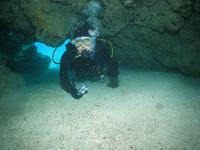 沖縄半日ダイビング