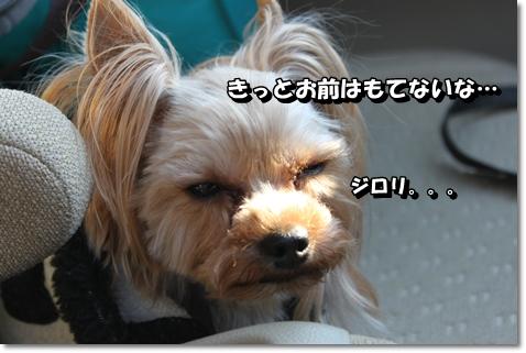 IMG_5893.jpg