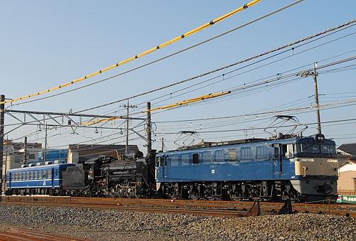 DSC_4511.jpg