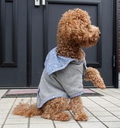 リバーシブル犬服