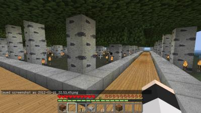 minecraft102.jpg