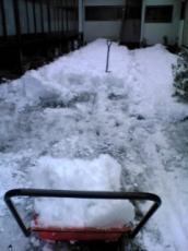 雪半分処理
