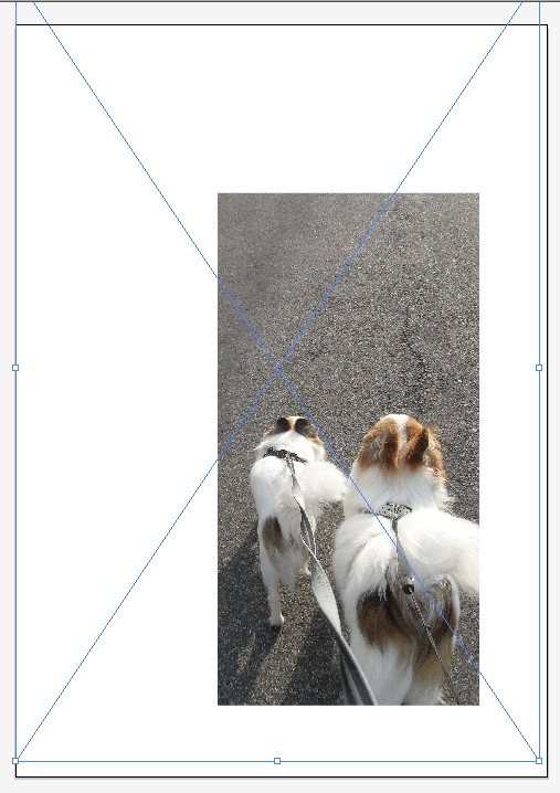 スクリーンショット(2009-11-08 11.15.16)