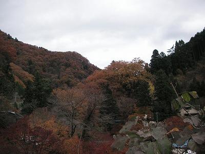 2008.11.25-41