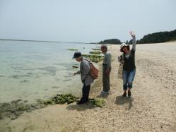 ココの海岸は珊瑚で出来ていて、歩くといい音がします。