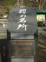 008錦帯橋