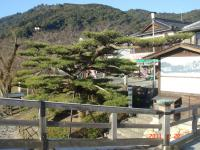 010錦帯橋