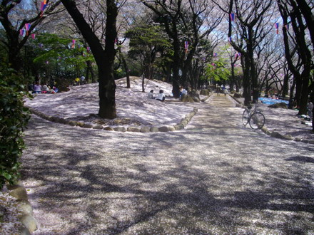 飛鳥山公園)