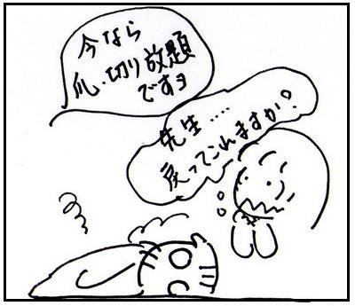 38-2.jpg