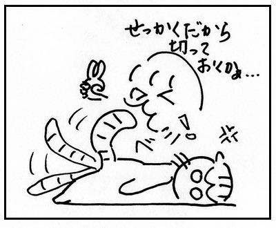 38-4.jpg