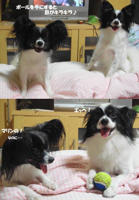 目!キラキラ☆