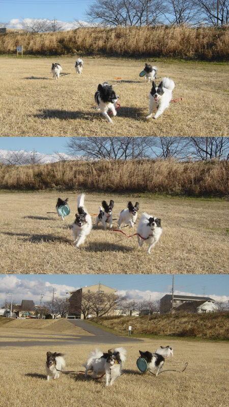 強風の中~走ります^m^