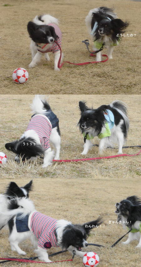 動くボール!