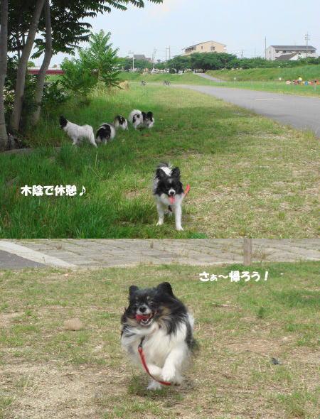 散歩だ~♪