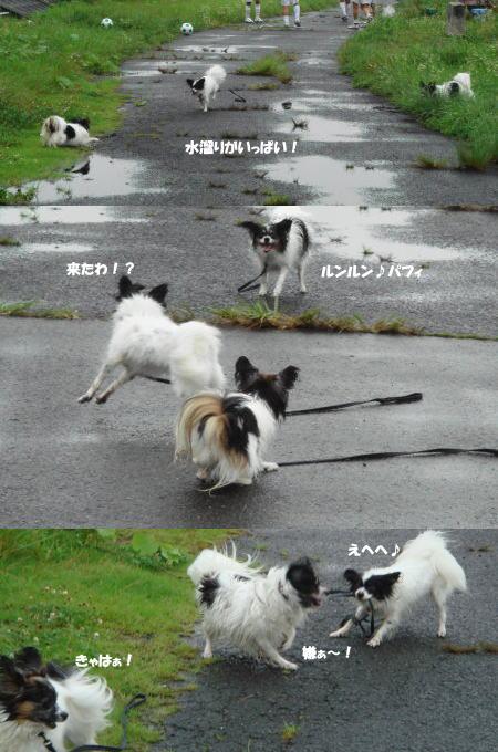 雨降りなんて~へっちゃら!