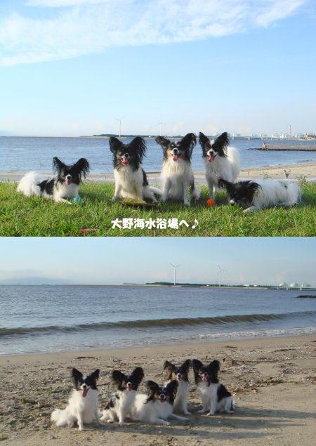 久しぶりの海です!