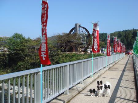 橋を渡って、お散歩道へ