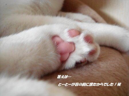 また会おうね!(^^)/~~~
