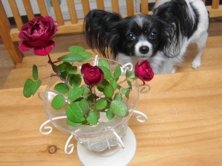 お花を飾って~