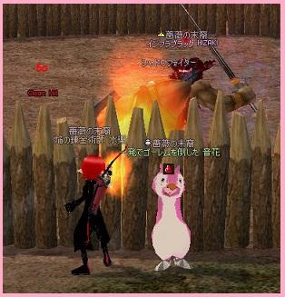2011_02_26_002 働けペンギン