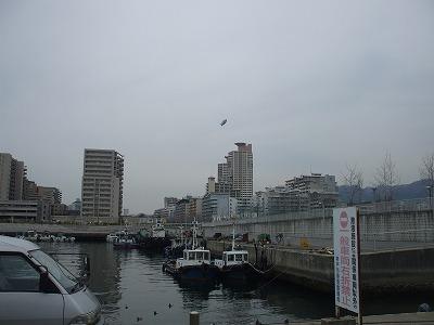 2011_03060010.jpg