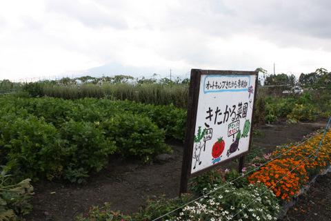 きたかる菜園