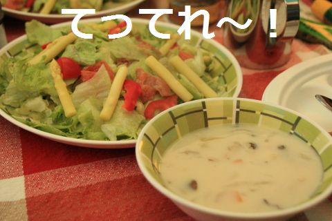 サラダ&シチュー