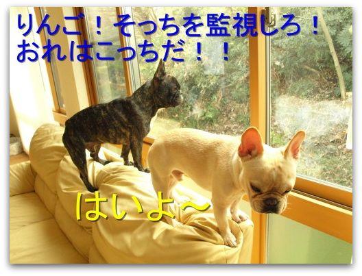 20081221_57.jpg