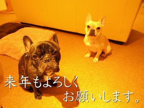 20081231_41.jpg