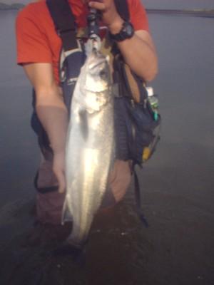 白河20100503