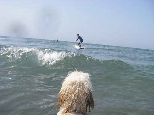 512 surf