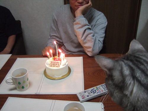 518 cake