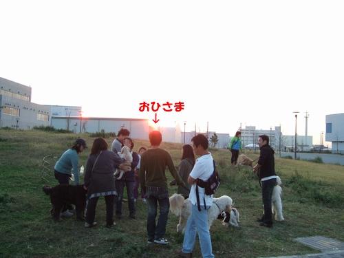 DSCF7077.jpg