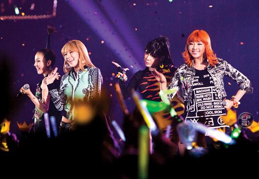 2ne1-yg-family-concert-2010-dvd.jpg