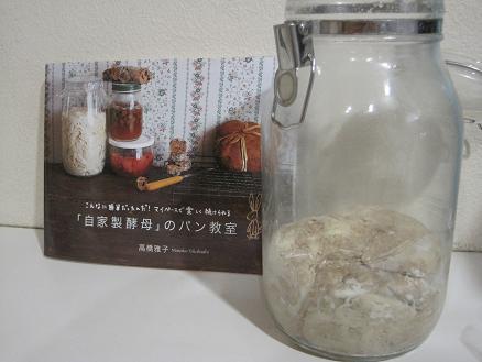 レーズン酵母2010.03.24