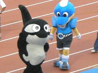 名古屋グランパスのマスコット、グランパスくんと、川崎フロンターレのマスコット、ふろん太。名古屋とシャチは分かるが川崎とイルカはちょっと…。